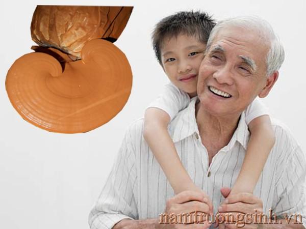 Linh chi tốt cho ngời trẻ, khoẻ cho người già