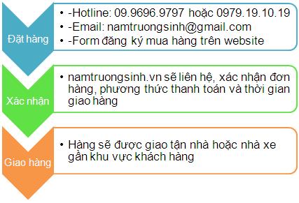 huong dan mua nam linh chi truong sinh
